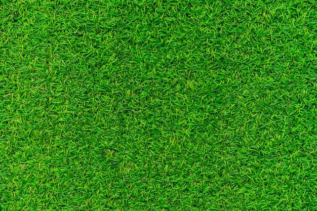 Trama Di Sfondo Verde Erba Scaricare Foto Premium