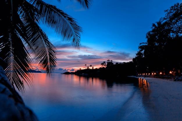 Tramonto variopinto luminoso su un'isola tropicale, con le siluette delle palme e carta da parati, cartolina, isola tailandia di koh phangan Foto Premium