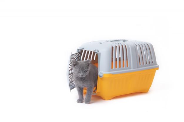 Trasportino per gatti e piccoli cani isolati su bianco Foto Premium
