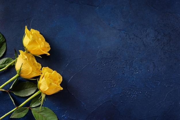Tre rose gialle su sfondo blu scuro con uno spazio per un testo Foto Premium
