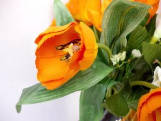 Tulipani arancioni, tulipani Foto Gratuite