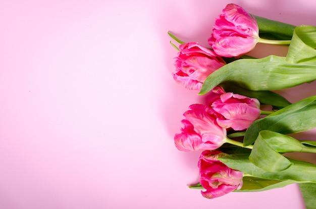 Tulipani rosa su carta. spazio libero per il tuo testo. Foto Premium