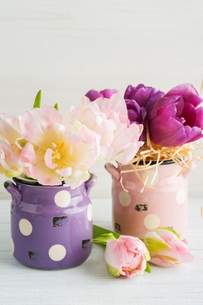 Tulipani viola rosa in vasi di terracotta carino Foto Premium