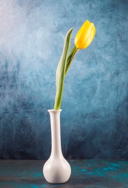 Tulipano singolo fresco posto in vaso elegante Foto Gratuite
