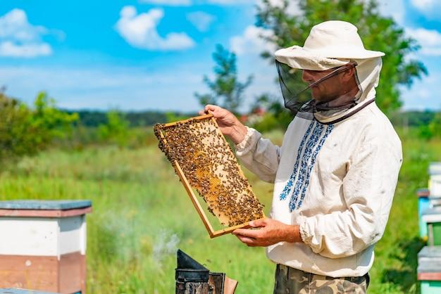 Un apicoltore in indumenti protettivi tiene una cornice con nido d'ape per le api nel giardino in estate Foto Premium