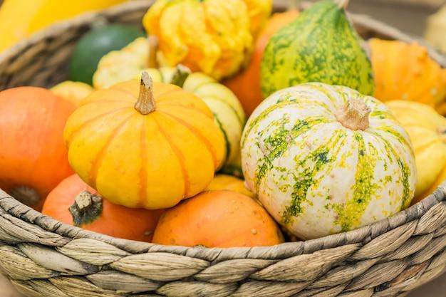 Un assortimento di piccole zucche decorative di diversi colori e forme in un cestino. composizione interna autunnale. Foto Premium