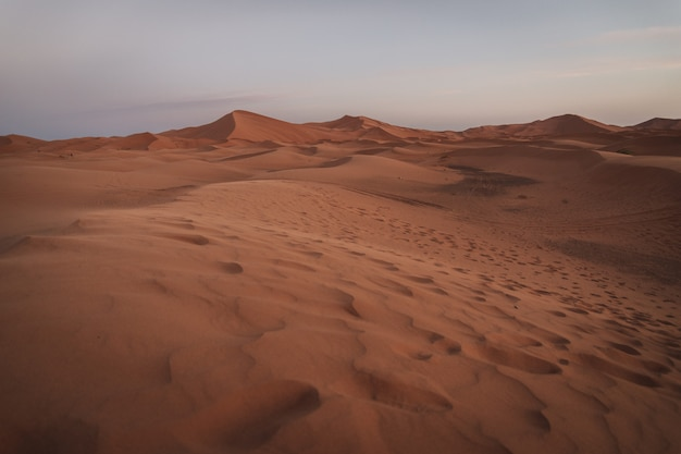 Un bellissimo paesaggio delle dune di sabbia nel deserto del sahara in marocco. fotografia di viaggio. Foto Premium