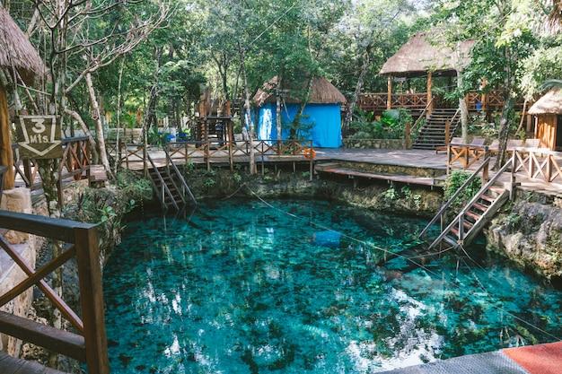 Un cenote nella natura con acqua meravigliosa Foto Premium