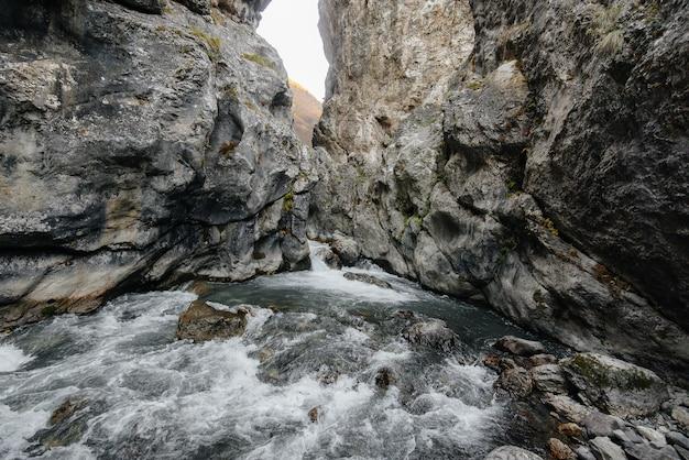 Un fiume di montagna tempestoso scorre attraverso una gola di montagne. natura. Foto Premium