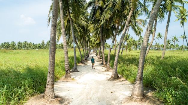 Un giovane uomo in piedi nel mezzo di una strada sabbiosa con palme su entrambi i lati Foto Gratuite