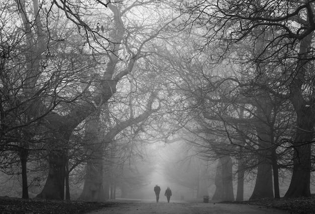 Un inquietante parco oscuro con due persone in lontananza Foto Gratuite