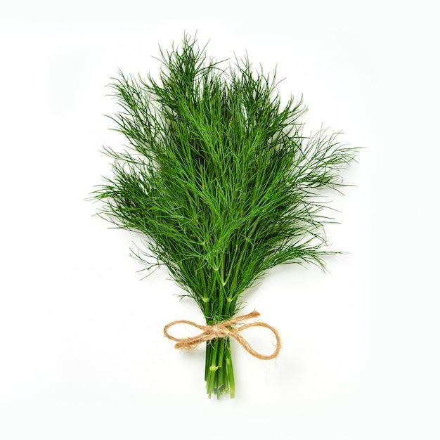 Un mazzo di aneto isolato. aneto verde fresco ed ecologico, lavorato a maglia con una corda Foto Premium