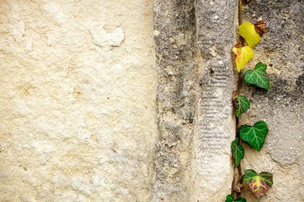 Un vecchio cimitero ebraico con simboli religiosi. Foto Premium