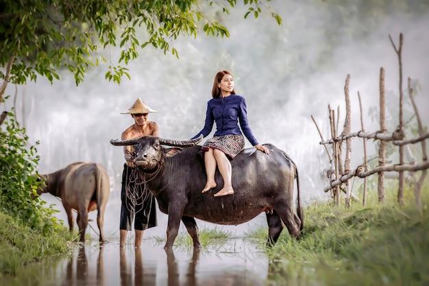 Una bella donna thailandese è seduta sulla schiena di un bufalo. Foto Premium
