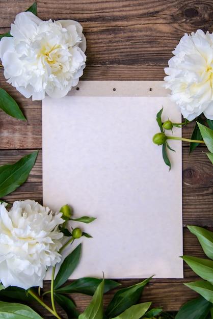 Una bellissima cornice di peonie bianche Foto Premium