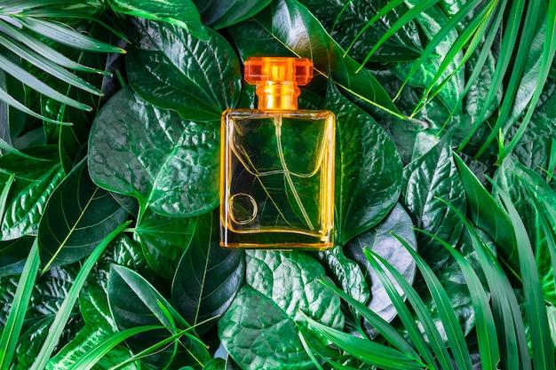 Una Bottiglia Di Profumo E Profumo Naturale Su Uno Sfondo Verde