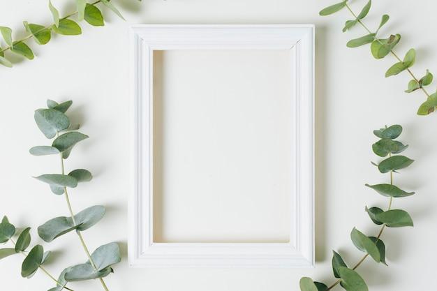 Una cornice vuota bordo bianco circondato con ramoscello di foglie verdi su sfondo bianco Foto Gratuite