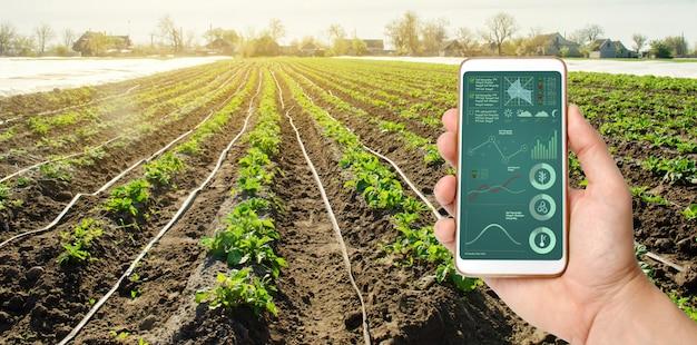 Una mano è in possesso di uno smartphone con gestione del sistema di irrigazione e analisi dei dati Foto Premium