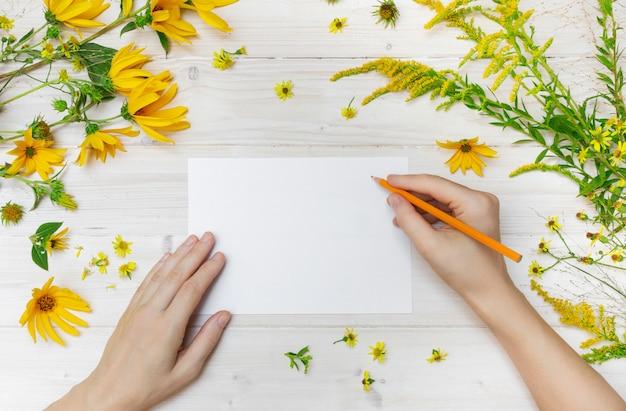 Una persona che attinge un libro bianco con una matita arancio vicino ai fiori gialli su una superficie di legno Foto Gratuite