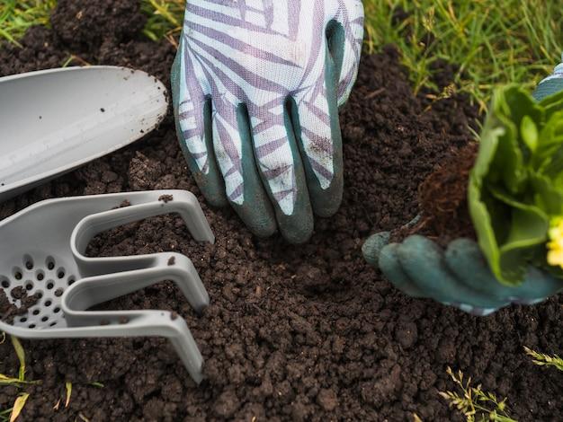 Una persona che scava terreno per piantare piantine Foto Gratuite