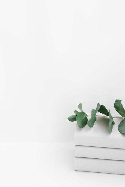 Una pila di tre libri con il ramoscello su priorità bassa bianca Foto Gratuite