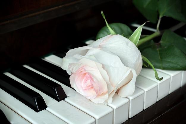 Una rosa rosa pallida giace sulla vecchia tastiera di un pianoforte. Foto Premium