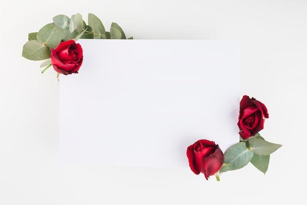 Una Rosa Rossa Decorata Su Carta Bianca Su Sfondo Bianco Scaricare