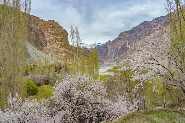 Una vista panoramica della valle di turtuk e il fiume shyok. Foto Premium