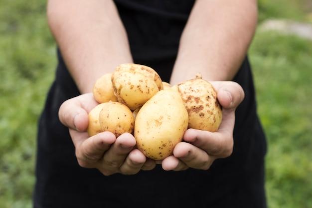 Uomo che tiene patate fresche Foto Gratuite