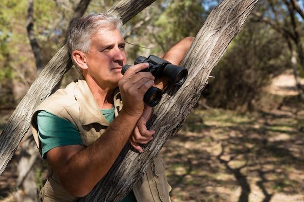 Uomo con binocolo dall'albero Foto Gratuite