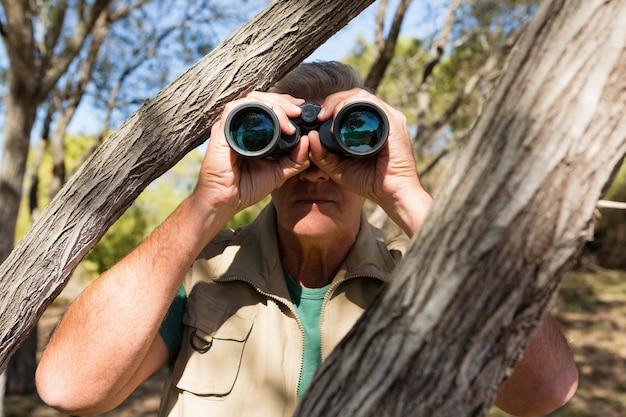 Uomo dall'albero che osserva tramite il binocolo Foto Gratuite