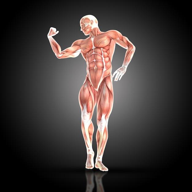 Uomo muscolare comprimendo i bicipiti Foto Gratuite