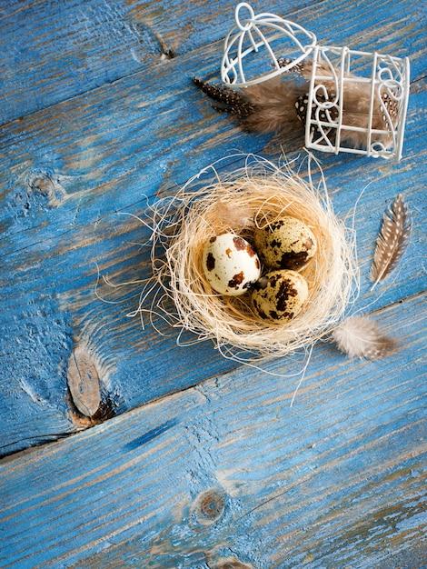 Uova di quaglie su una tavola di legno blu Foto Premium