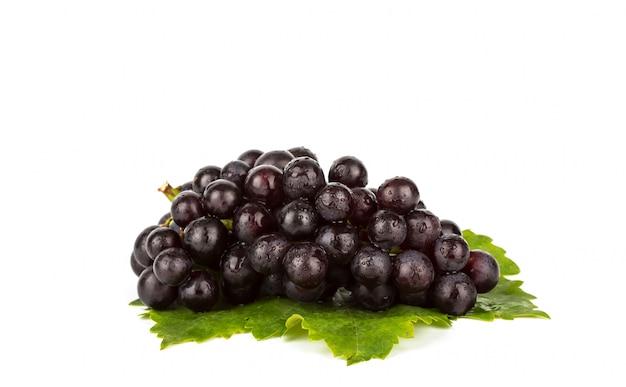 Uva rossa con foglia verde isolato su sfondo bianco Foto Gratuite