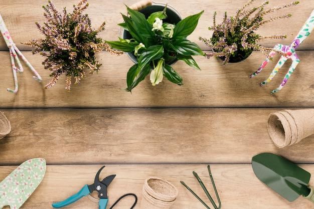 Varietà di attrezzature da giardinaggio; piante da fiore; vaso di torba sistemato sulla scrivania in legno Foto Gratuite