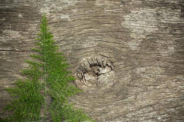 Vecchia superficie di legno con erba di legno usata come fondo Foto Gratuite