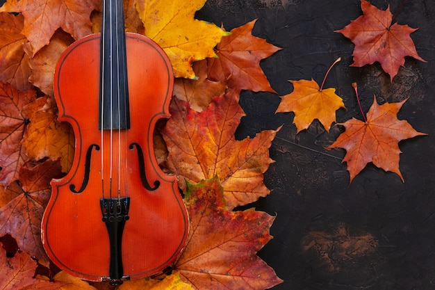 Vecchio violino sul fondo giallo delle foglie di acero di autunno. vista dall'alto, primo piano. Foto Premium