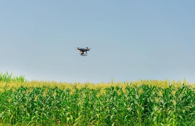 Velivolo senza pilota dorn corn farm, automazione agricola, agricoltura digitale Foto Premium
