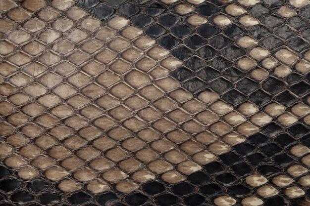 Vera pelle di serpente. trama di sfondo in pelle. foto del primo piano. Foto Premium