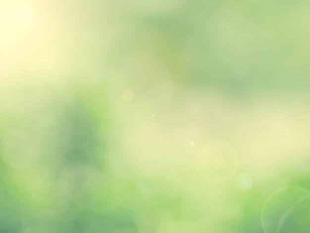 Verde Natura Sfondo Astratto Da Foglie Vento Soffia Nella Foresta