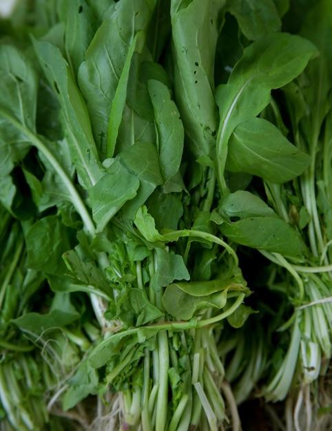 Verdure verdi Foto Premium