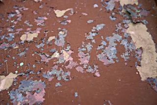 Vernice pelati pittura muro scaricare foto gratis for Vernice muro