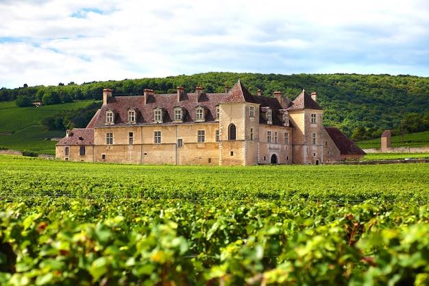 Vigneto castello francese Foto Gratuite