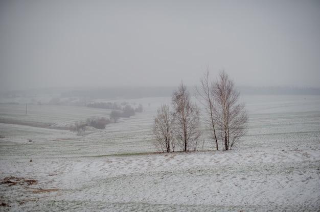 Villaggio di montagna innevata Foto Premium