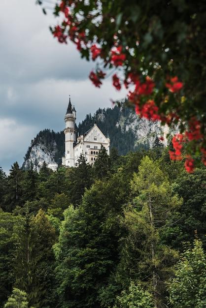 Vista dal villaggio di hohenschwangau sul castello di neuschwanstein. in primo piano i fiori rossi Foto Premium