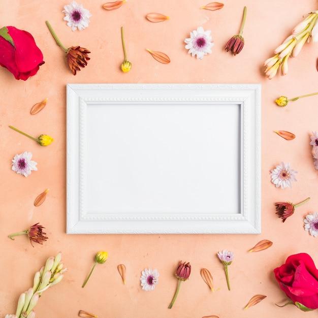 Vista dall'alto del telaio con assortimento di fiori e rose di primavera Foto Gratuite