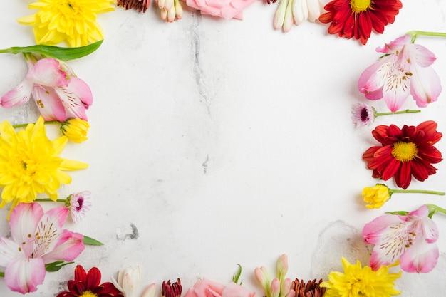 Vista dall'alto della cornice di fiori di primavera multicolore Foto Gratuite