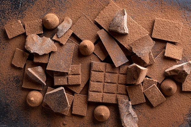 Vista dall'alto di cioccolato con caramelle e cacao in polvere Foto Gratuite