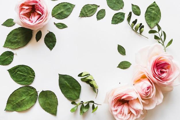 Vista dall'alto di fiori e foglie Foto Gratuite