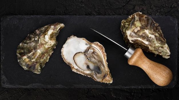 Vista dall'alto di ostriche con coltello Foto Gratuite